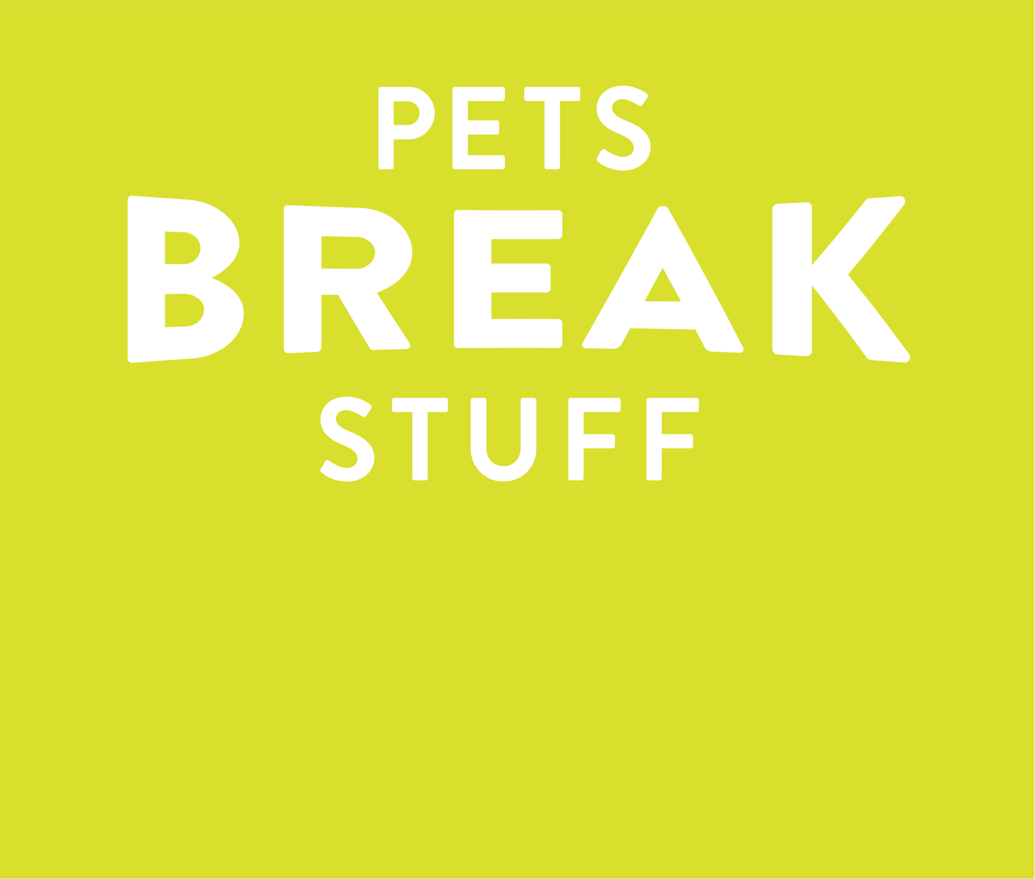 Pets break stuff